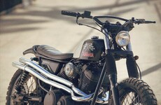 Yamaha SCR950 Checkered Scrambler