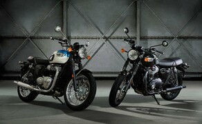 Triumph Street Cup und T100/T100 Black Bild 9