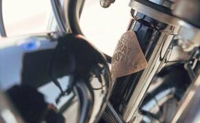 Yamaha SCR950 Checkered Scrambler Bild 13