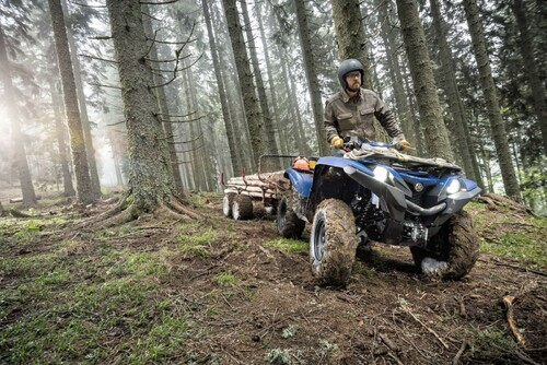 Yamaha Grizzly 700 EPS 2016 Foto
