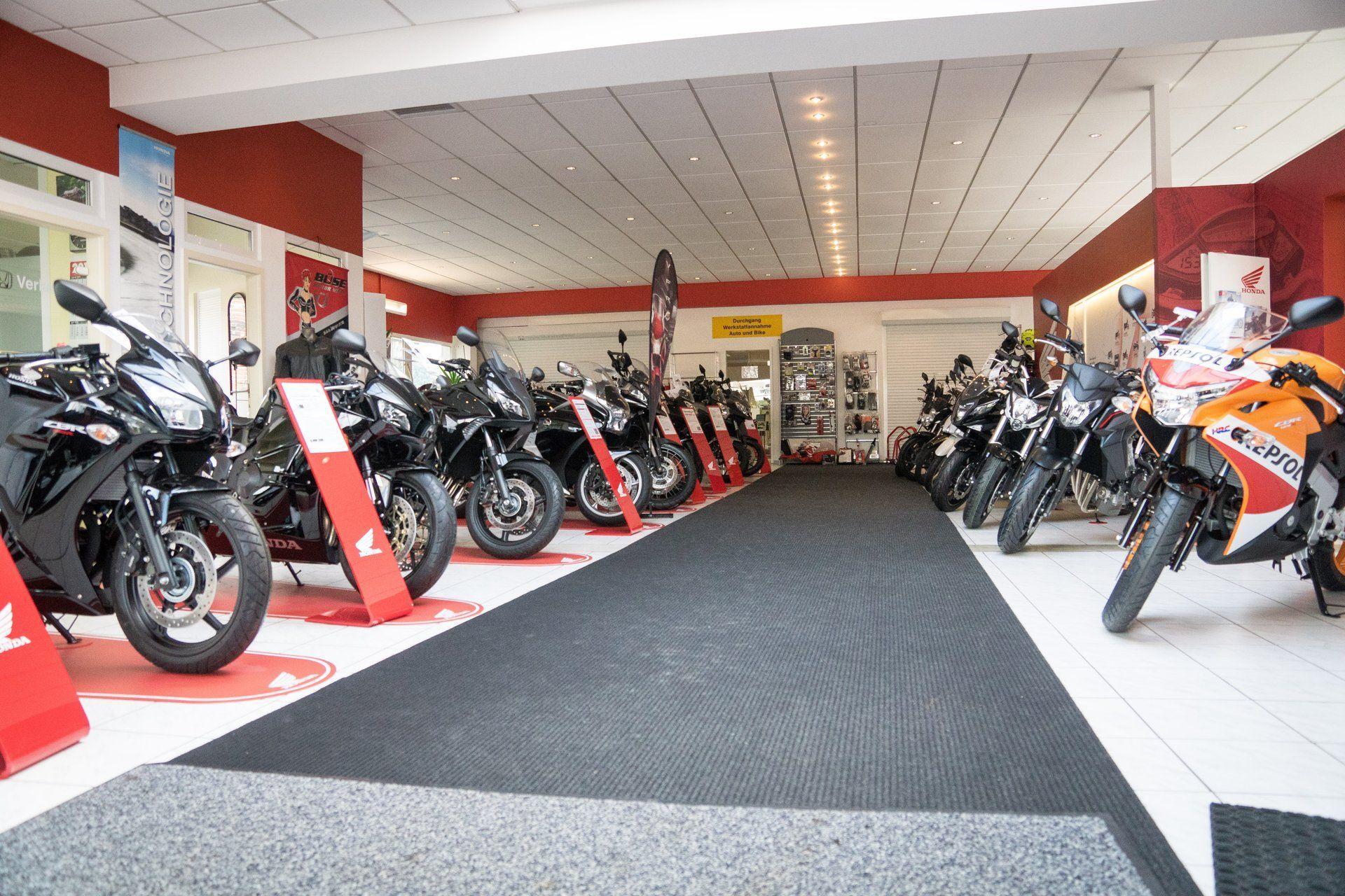 Unternehmensbilder KM Kaczmarek Motorsport 20