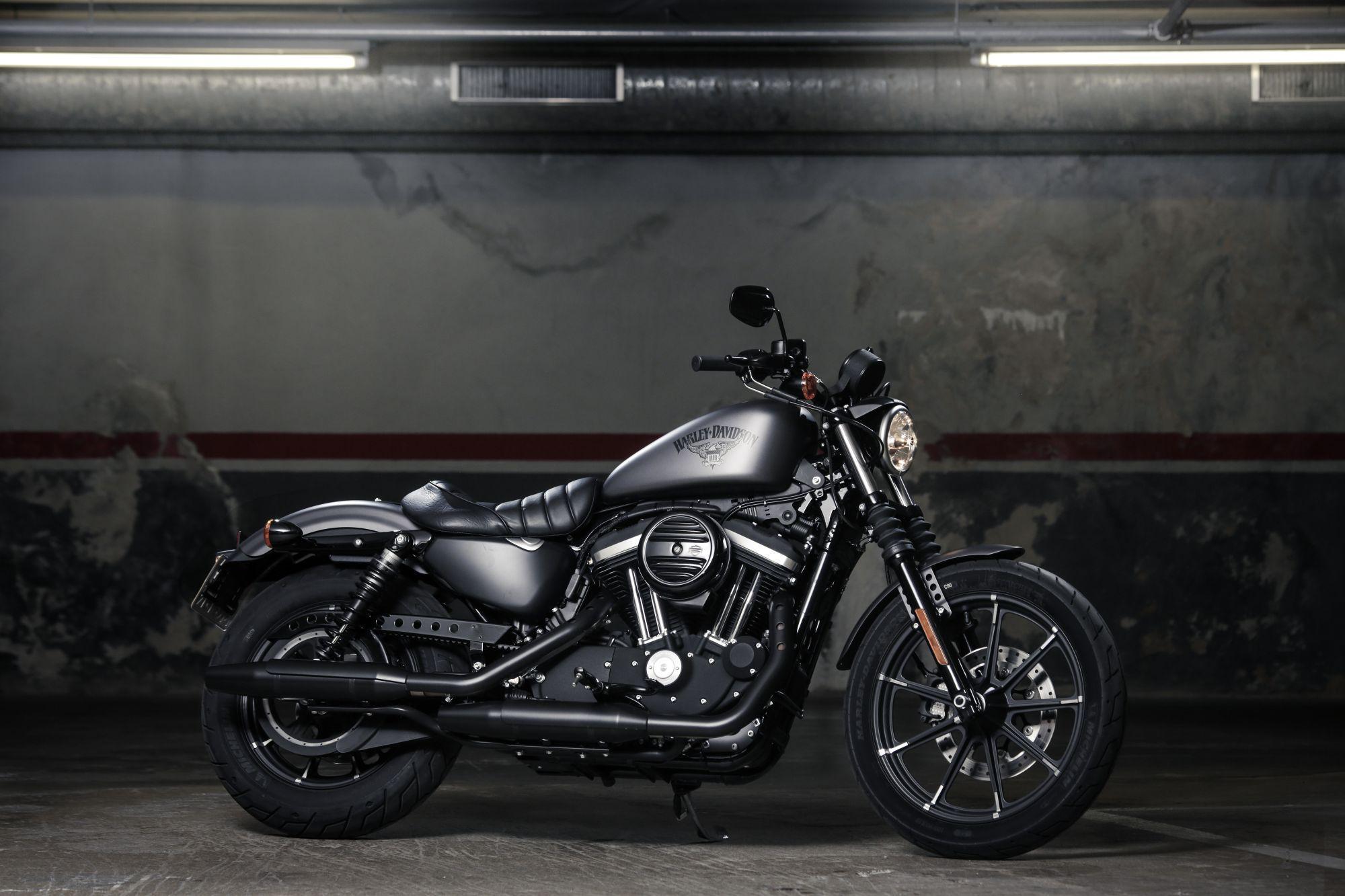 Harley Davidson Black Denim Cleaner