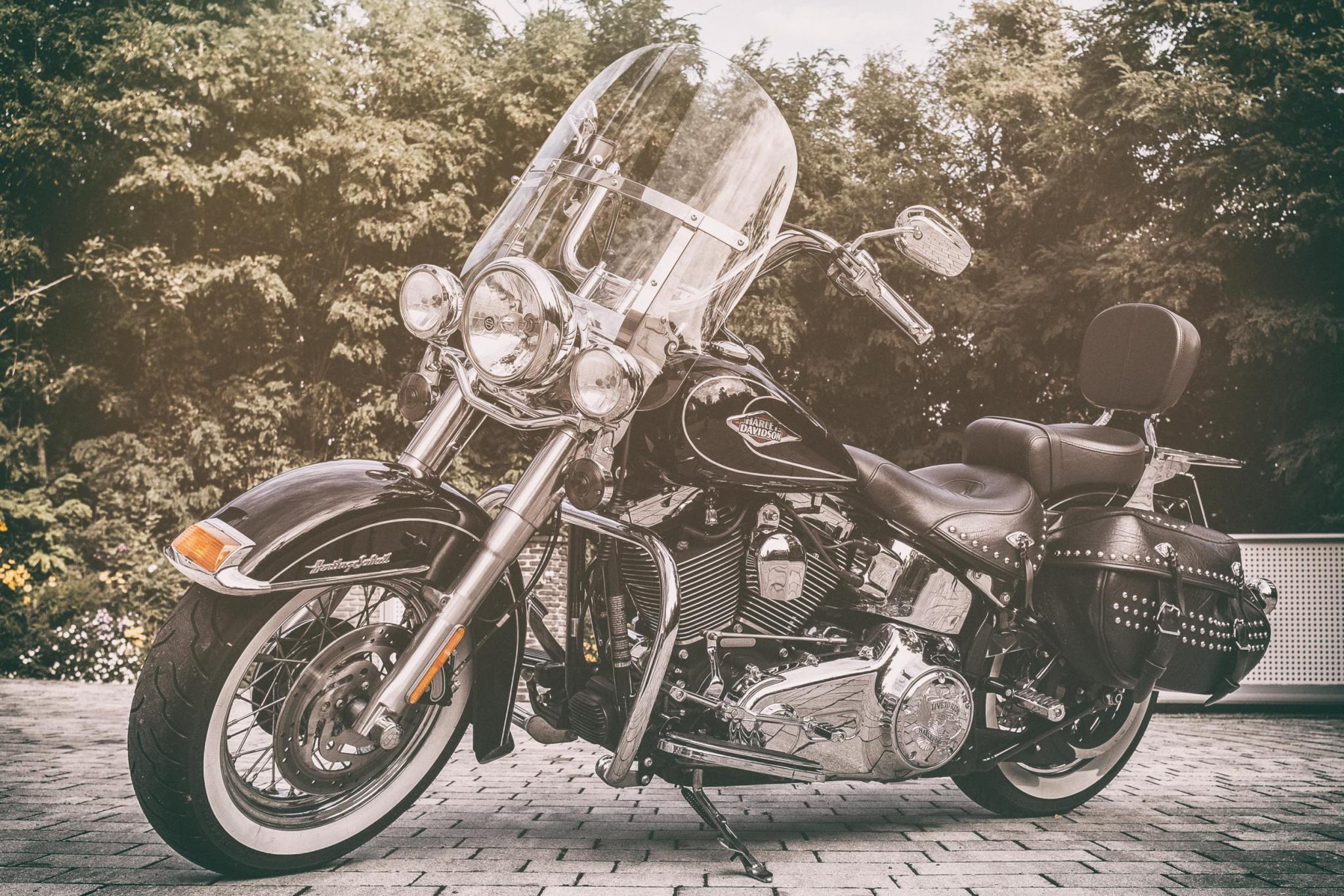 harley davidson heritage softail classic motorrad fotos motorrad bilder. Black Bedroom Furniture Sets. Home Design Ideas