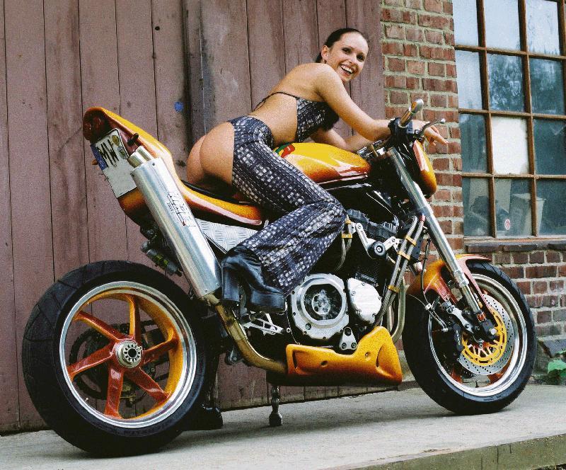 Quad Racer And Atv  Suzuki Pictures