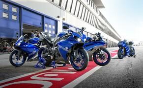 Yamaha Race Blu 2013 Bild 3