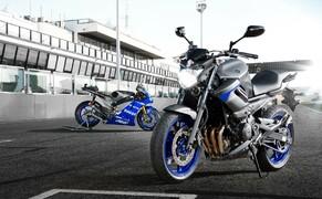 Yamaha Race Blu 2013 Bild 4