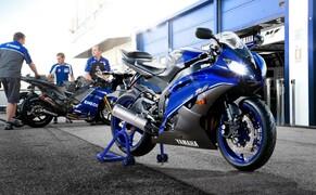 Yamaha Race Blu 2013 Bild 8