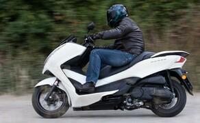 Honda Forza 300 MF08-2013 Bild 14