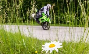 Kawasaki Z1000SX Test | Stunts, Action, Fahraufnahmen Bild 4 Nils: Die Z 1000 SX ist ein großartiges Mittelding, ja der optimale Schnittpunkt zwischen Sport- und Reisemotorrad. Gibt nicht viele Bikes die das so gut hinbekommen. Eine würdige Gegnerin ist aber ein, auf den ersten Blick komplett anderes Motorrad: Die KTM 1190 Adventure!