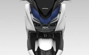 Honda Forza125 Bild 7 Honda verbindet sportliche Fahrleistungen mit einem laut Werk extrem niedrigen Verbrauch weit unter 3 Litern / 100 km. Unsere Erfahrungen haben gezeigt, dass Honda bei diesen Angaben sehr ehrlich ist.