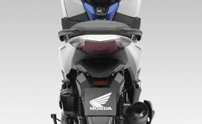 Honda Forza125 Bild 8 Vorne wie hinten kommt LED-Technik zum Einsatz, was mit ein Grund ist, wieso der Roller modern und hochwertig aussieht.