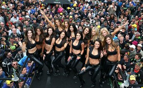 MotoGP Le Mans 2015 Bild 11 Wie immer, dürfen auch in Frankreich die hübschen Monster-Girls nicht fehlen...