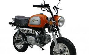 10 Motorräder mit niedriger Sitzhöhe 2016 Bild 12 Platz 2: Skyteam Gorilla, 660 mm Ein völliger Witz ist die kleine Maschine mit 660 Millimeter Sitzhöhe gewiss nicht. Immerhin funktioniert alles so wie auf einer ausgewachsenen Maschine.