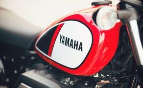 Yamaha SCR950 Scrambler Bild 9