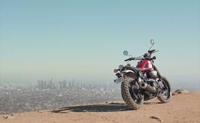 Yamaha SCR950 Scrambler Bild 20