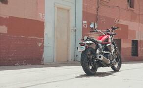Yamaha SCR950 Scrambler Bild 16