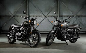 Triumph Street Cup und T100/T100 Black Bild 10