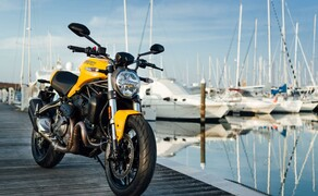 Ducati Monster 821 2018 Bild 15