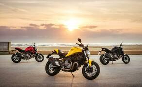 Ducati Monster 821 2018 Bild 17