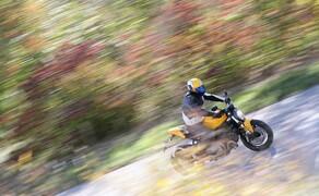 Ducati Monster 821 Test 2018 Bild 1