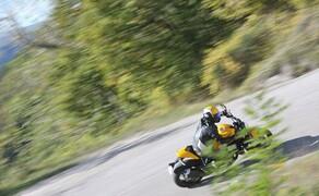 Ducati Monster 821 Test 2018 Bild 4