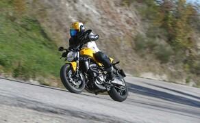 Ducati Monster 821 Test 2018 Bild 15