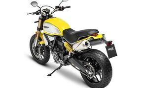 Ducati Scrambler 1100 Modelle 2018 Bild 17 Ducati Scrambler 1100
