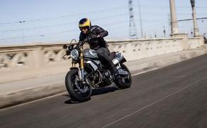 Ducati Scrambler 1100 Modelle 2018 Bild 4 Ducati Scrambler 1100 Special