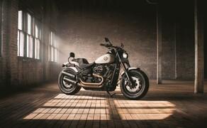 Dunlop D429 für Harley-Davidson Bild 3 Dunlop führt den D429 speziell für Harley-Davidson ein