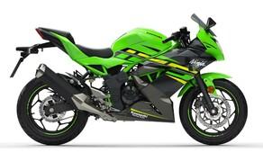 Kawasaki Ninja 125 und Z125 2019 Bild 1