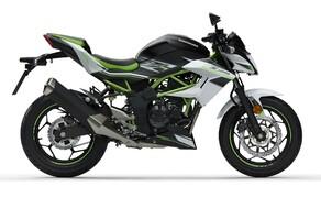 Kawasaki Ninja 125 und Z125 2019 Bild 2