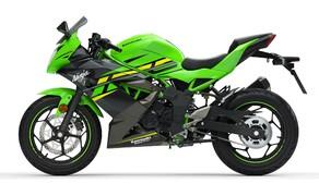Kawasaki Ninja 125 und Z125 2019 Bild 3