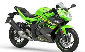 Kawasaki Ninja 125 und Z125 2019 Bild 5