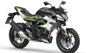 Kawasaki Ninja 125 und Z125 2019 Bild 6