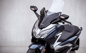 Honda Forza 300 Langzeit-Test Bild 2