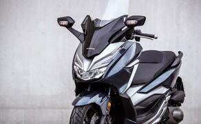 Honda Forza 300 Langzeit-Test Bild 3