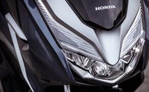 Honda Forza 300 Langzeit-Test Bild 6