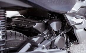 Honda Forza 300 Langzeit-Test Bild 18