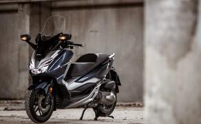 Honda Forza 300 Langzeit-Test Bild 1