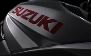 Suzuki GSX-S1000S Katana 2019 Test Bild 6