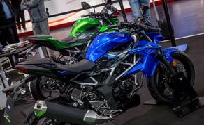 Kawasaki Z125 2019 Bild 8