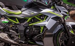 Kawasaki Z125 2019 Bild 9