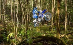 Yamaha WR450F 2019 Bild 1