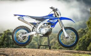 Yamaha WR450F 2019 Bild 5