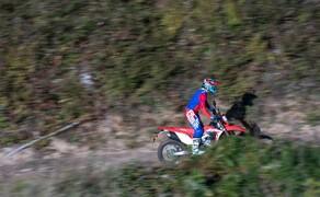 Honda CRF450L Test Bild 4