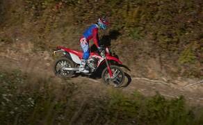 Honda CRF450L Test Bild 15