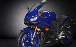 Yamaha YZF-R3 2019 Bild 18