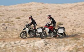Ducati Multistrada 1260 Enduro 2019 Bild 1