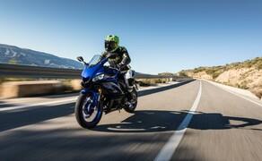 Yamaha YZF-R3 Test 2019 Bild 12