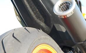 KTM 790 DunlopDuke Touring Ausbau Bild 9 Der Aspuff von GPR bietet 2 PS mehr Spitzenleistung und einen satten aber nicht aufdringlichen Sound.